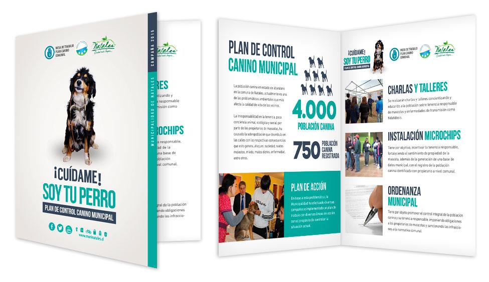 Campaña Tenencia Responsable Municipalidad De Natales