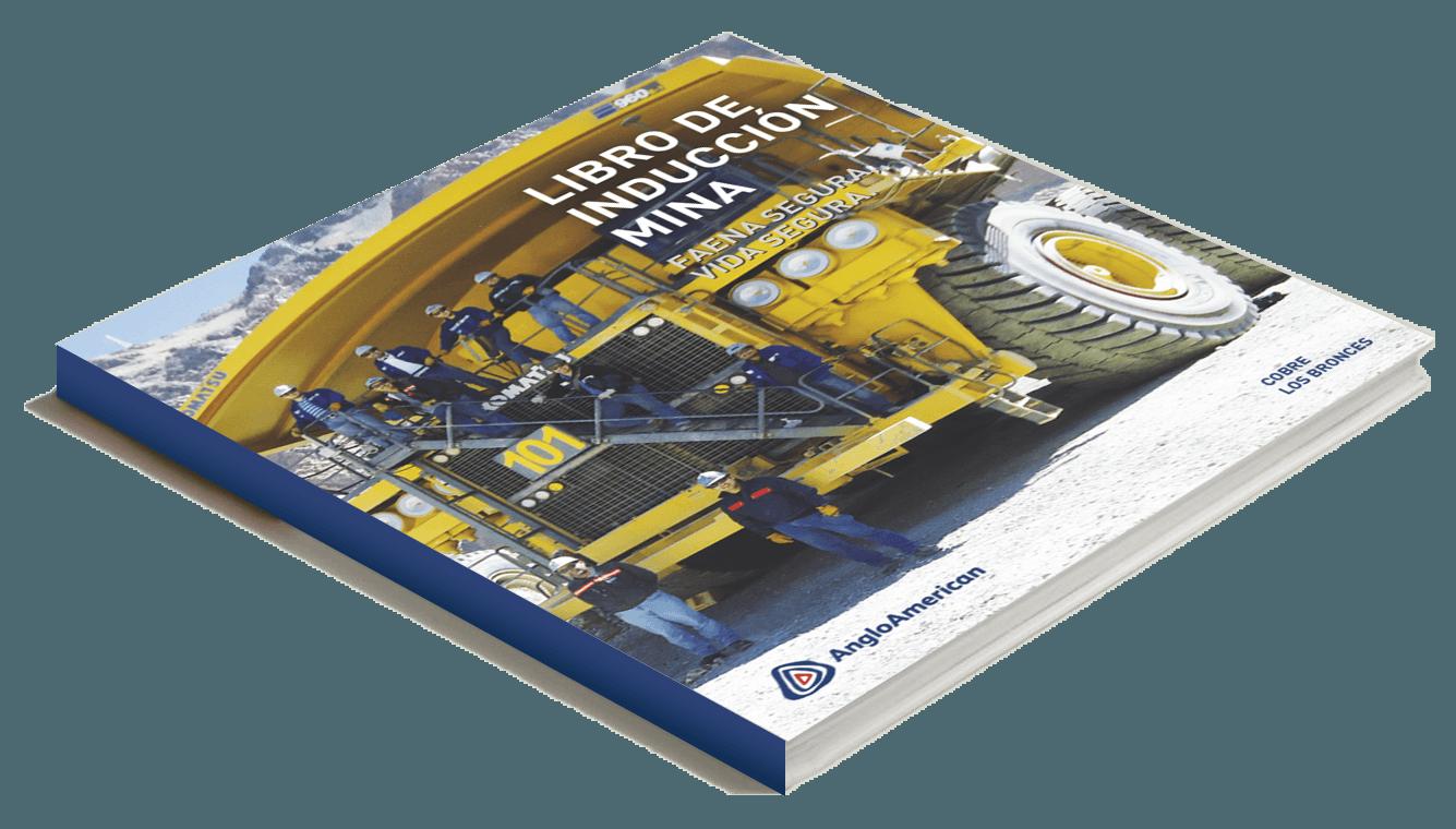 Manual De Inducción AngloAmerican